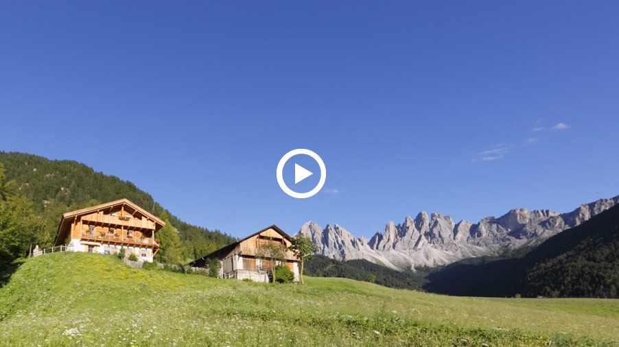Video: Attività in estate  - Agriturismo