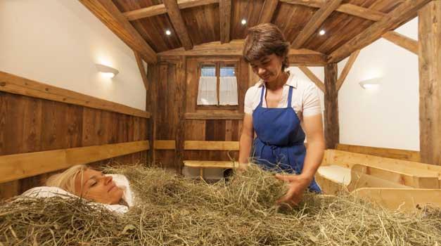 Agriturismi con bagni di fieno gallo rosso