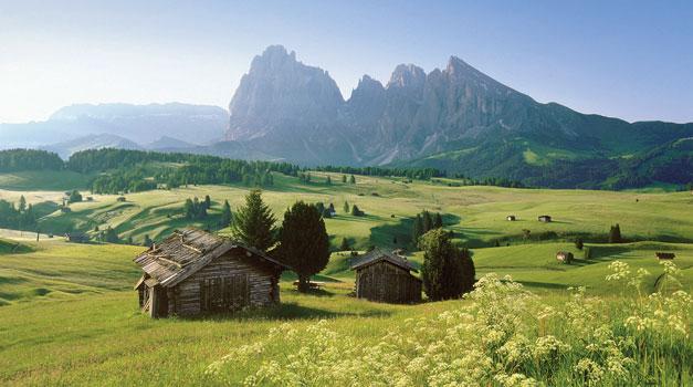 Vacanze Destate In Agriturismo Dellalto Adige Gallo Rosso