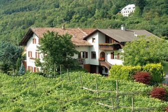 Haus Moargütl