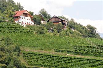 Rielinger-Hof