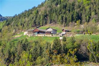Leitnerhof
