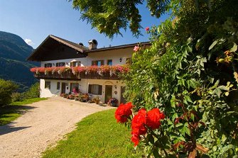 Gostnerhof  - Barbiano - Agriturismo in Alto Adige  - Valle Isarco