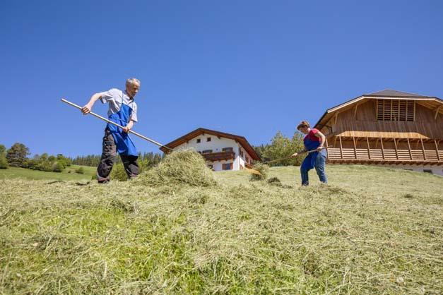 Pliegerhof - Seis - Castelrotto - Agriturismo in Alto Adige - Dolomiti