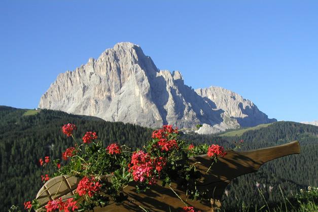 Soleiga - Selva di Val Gardena - Agriturismo in Alto Adige - Dolomiti