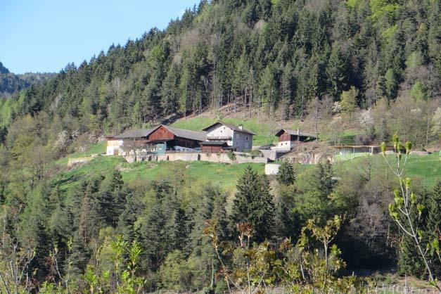 Leitnerhof verano agriturismo in alto adige merano e for Agriturismo bressanone e dintorni